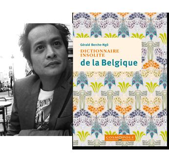 Bandeau-couverture-belgique-gerald-berche-ngo