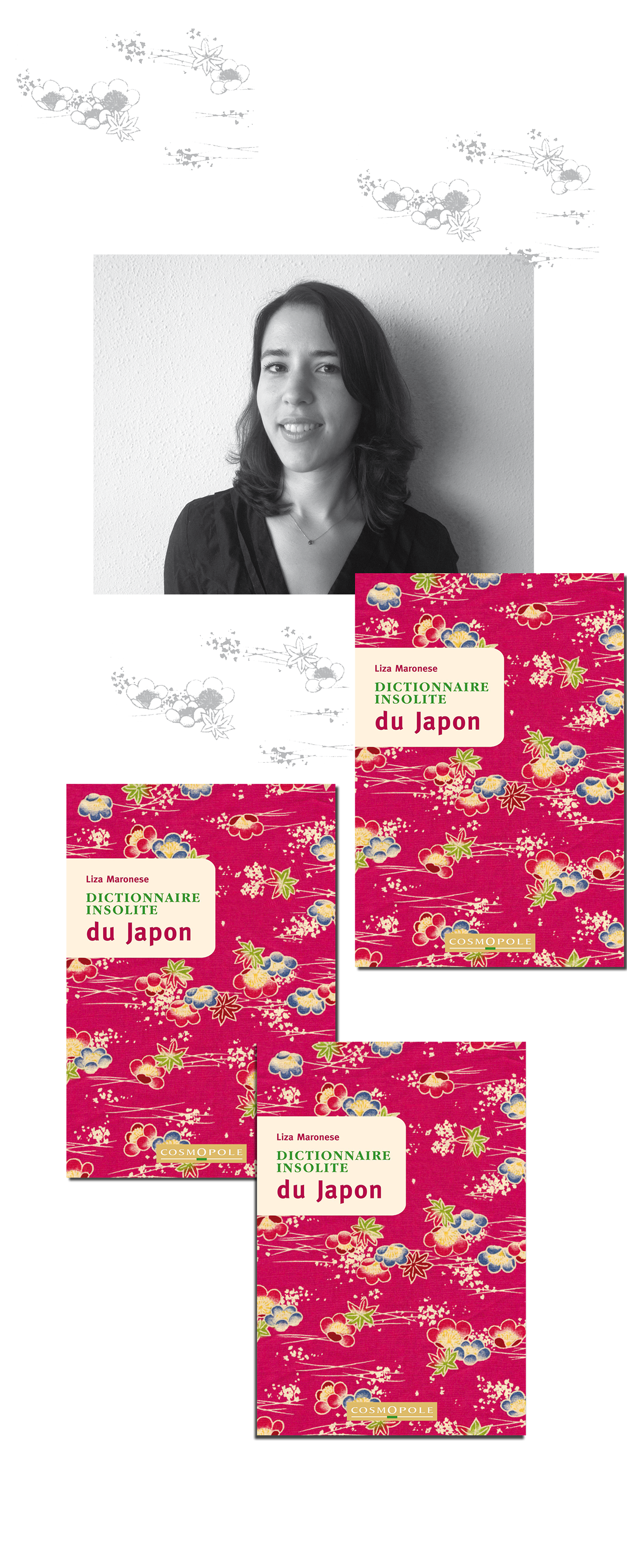 montage-japon-ITW